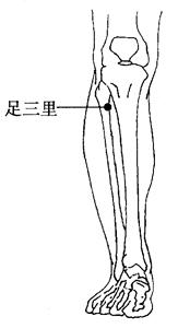 图2-6-3