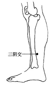 图2-6-4