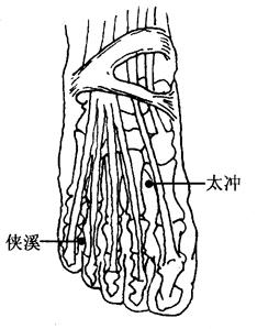 图2-14-4