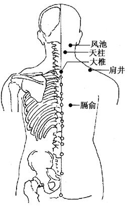 图3-1-1