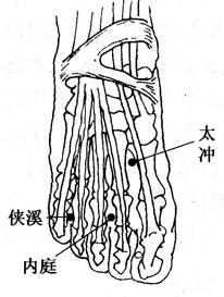 图6-3-4