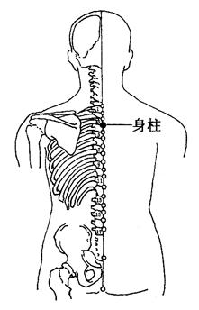 图2-4-3身柱