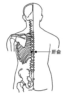 图2-6-2肝俞