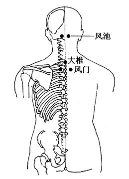 图3-2-1风池、大椎、风门