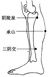 图3-10-3阳陵泉、承山、三阴交