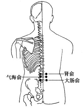 图4-5-2肾俞、气海俞、大肠俞