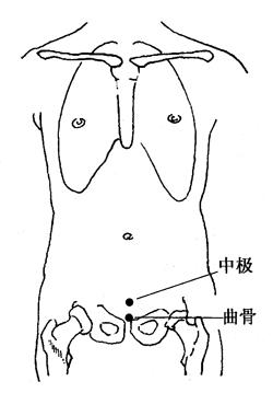 图4-6-1中极、曲骨