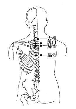 图6-3-1大椎、风门、肺俞、膈俞